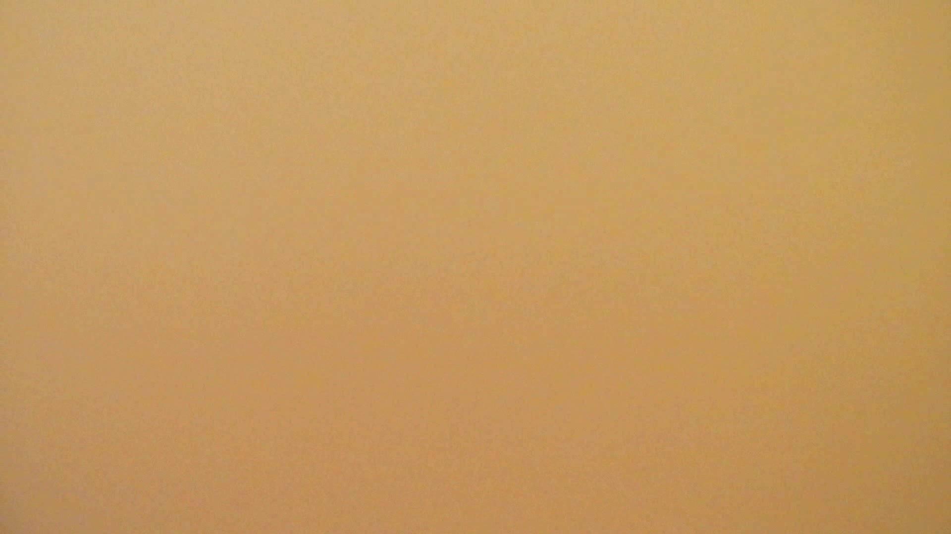 洗寿観音さんの 化粧室は四面楚歌Nol.6 OLのボディ  84PIX 66