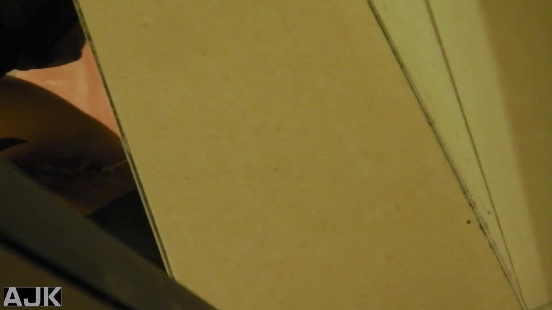 隣国上階級エリアの令嬢たちが集うデパートお手洗い Vol.09 お手洗い  62PIX 46