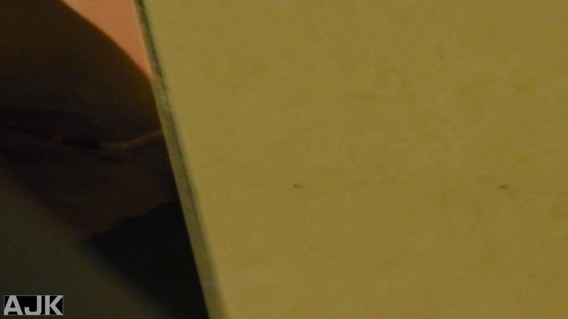 隣国上階級エリアの令嬢たちが集うデパートお手洗い Vol.09 お手洗い   OLのボディ  62PIX 47