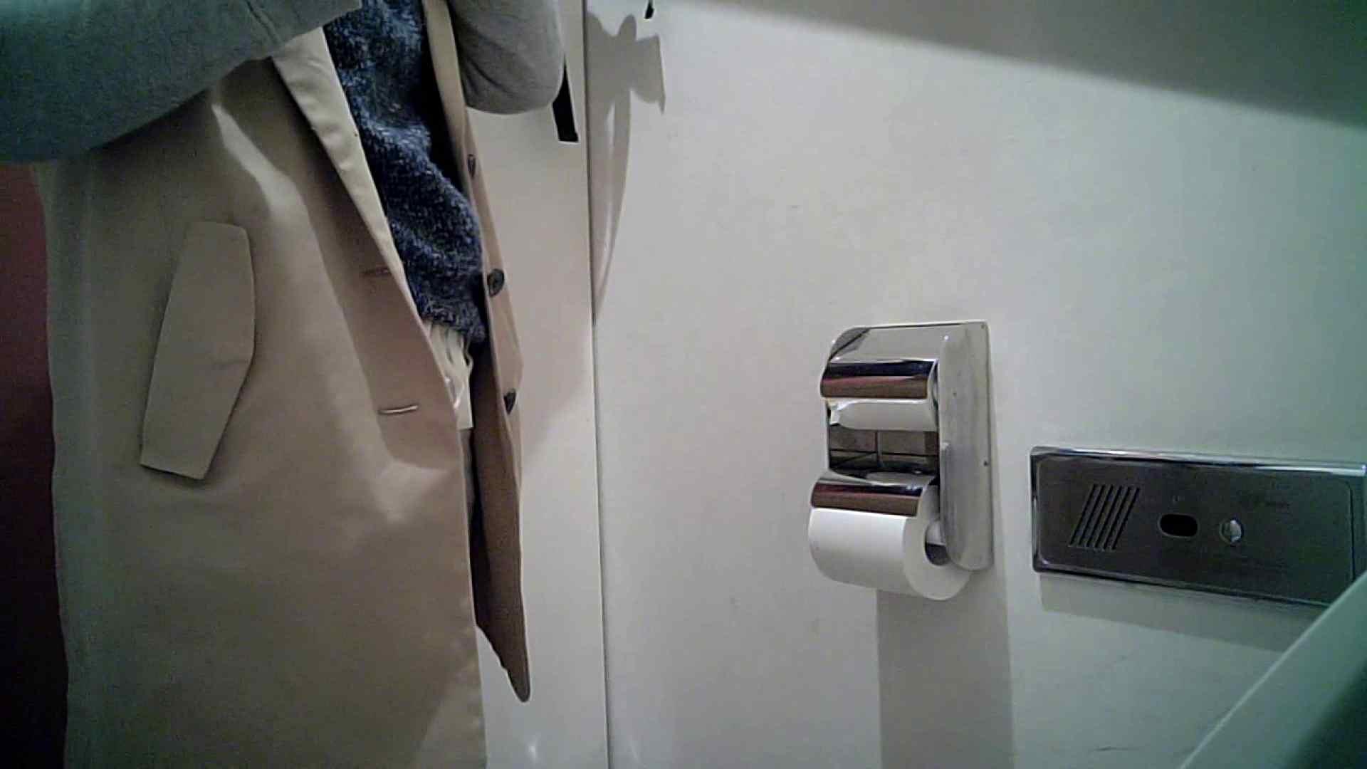 某有名大学女性洗面所 vol.26 OLのボディ 濡れ場動画紹介 59PIX 44