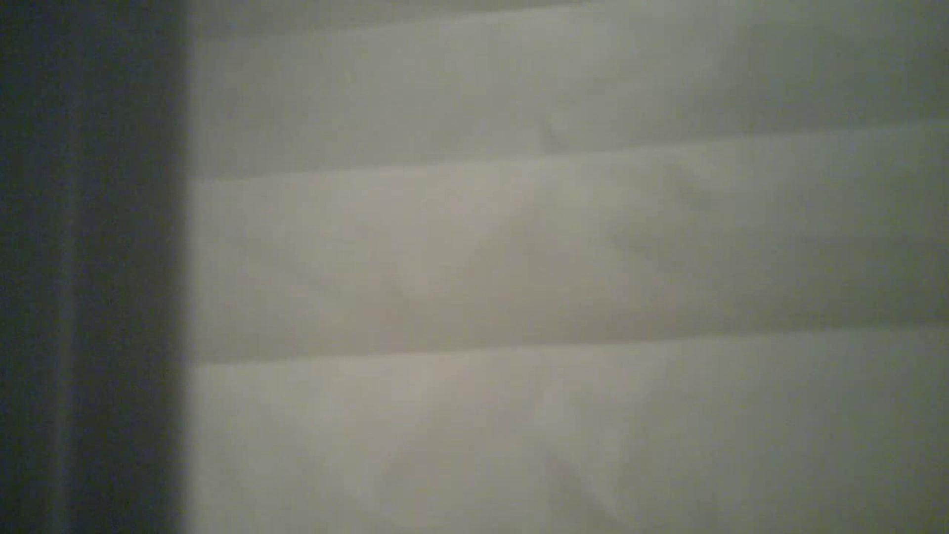 某有名大学女性洗面所 vol.31超大接近 投稿 ワレメ動画紹介 106PIX 94