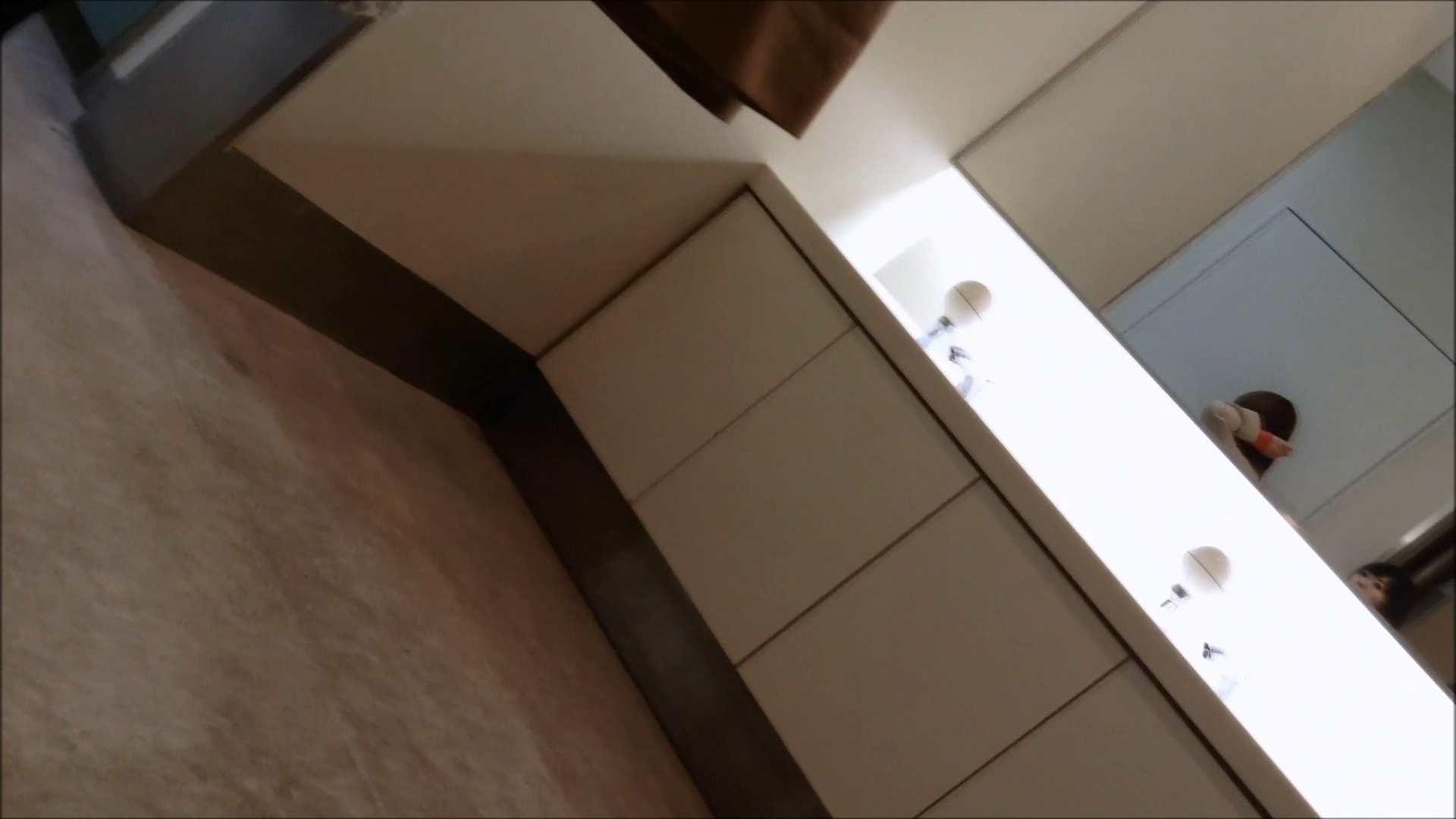 女子洗面所行列潜入記 Vol.01 OLのボディ AV無料動画キャプチャ 50PIX 38