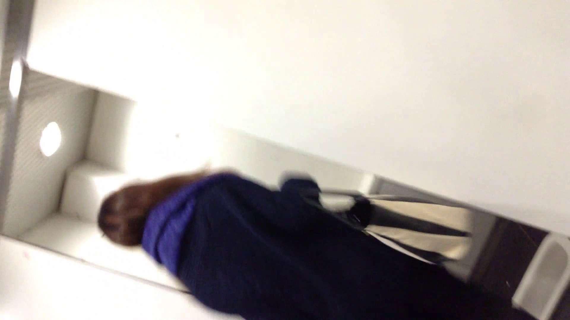 女子洗面所行列潜入記 Vol.06 潜入 盗み撮り動画キャプチャ 56PIX 7