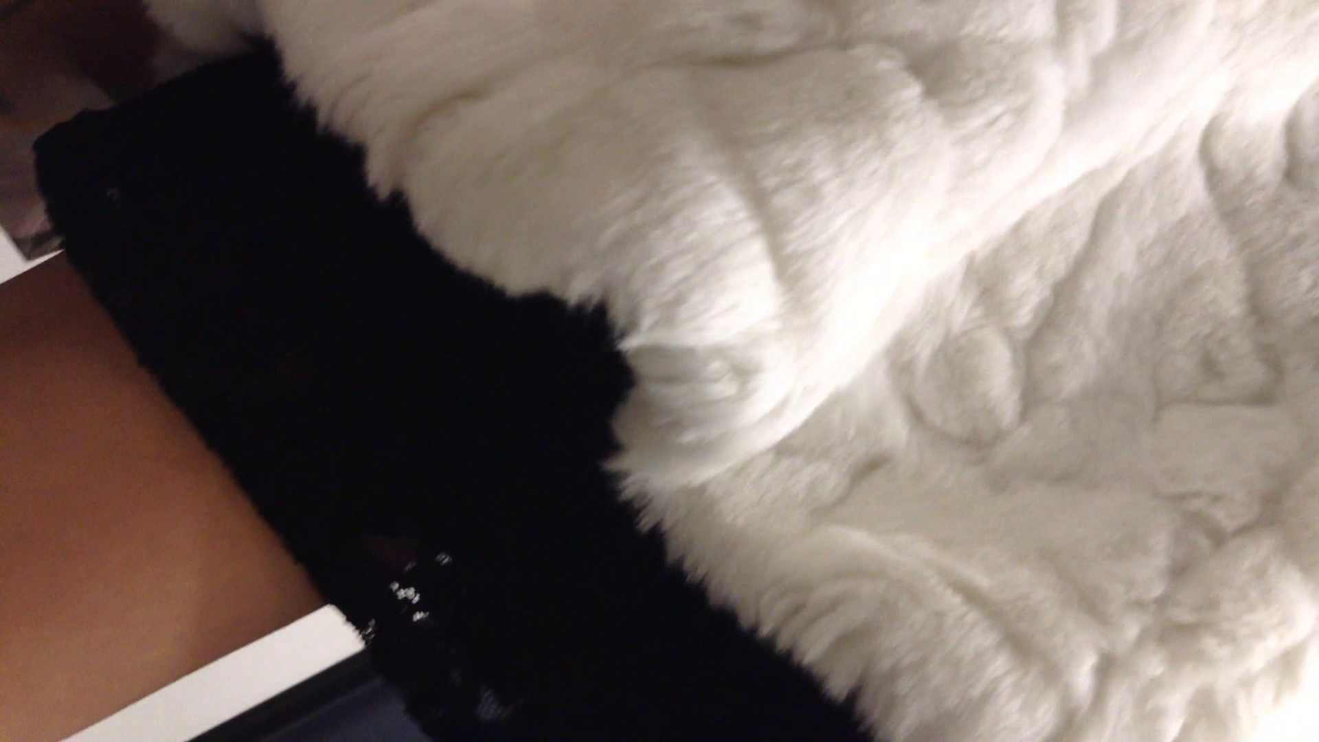 女子洗面所行列潜入記 Vol.06 潜入 盗み撮り動画キャプチャ 56PIX 43