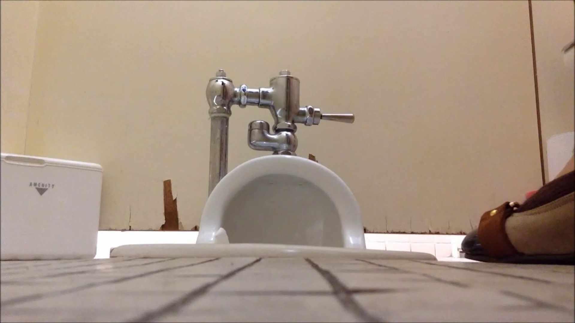 某有名大学女性洗面所 vol.04 排泄 濡れ場動画紹介 97PIX 77