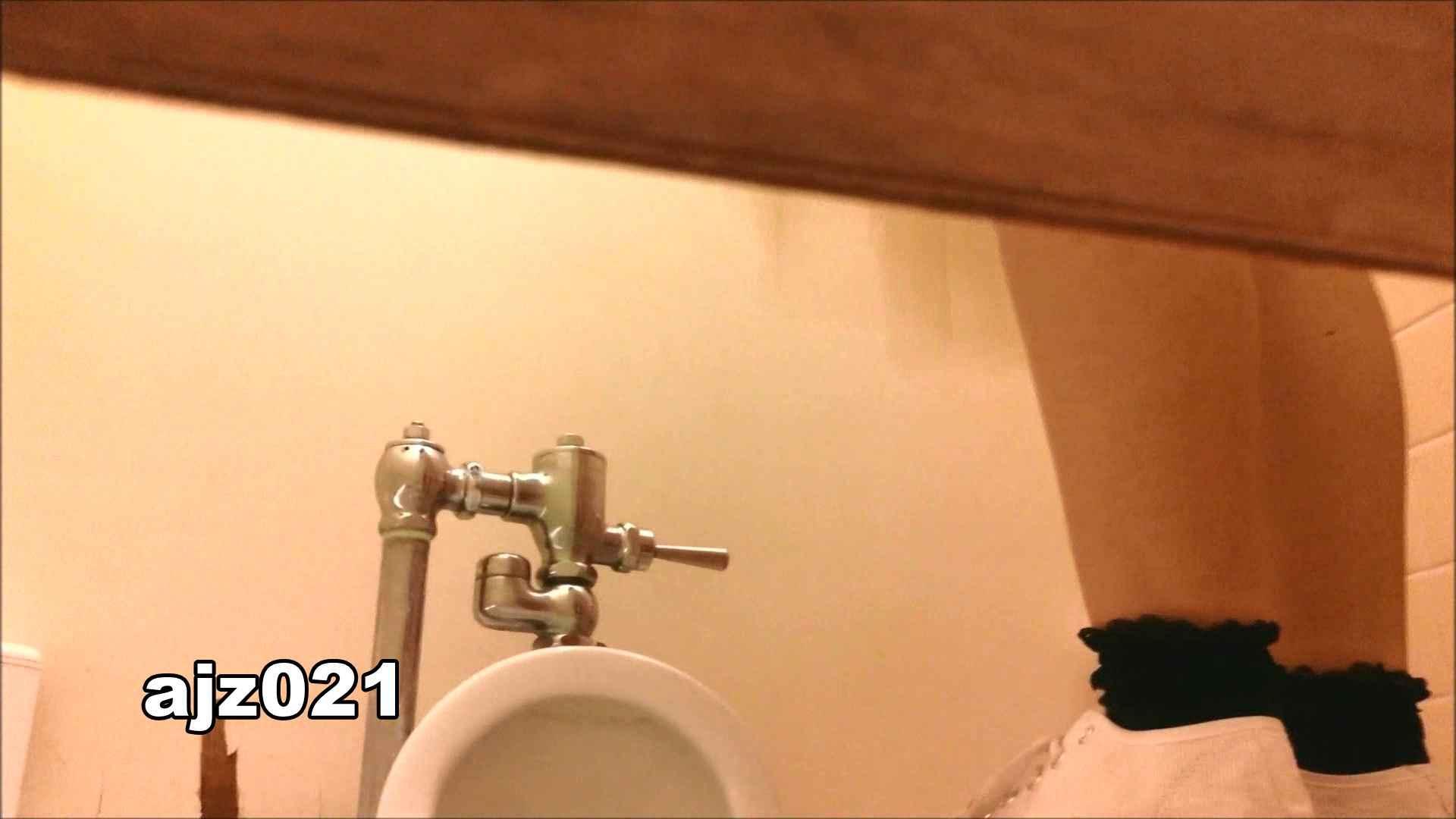 某有名大学女性洗面所 vol.21 和式 セックス画像 80PIX 16