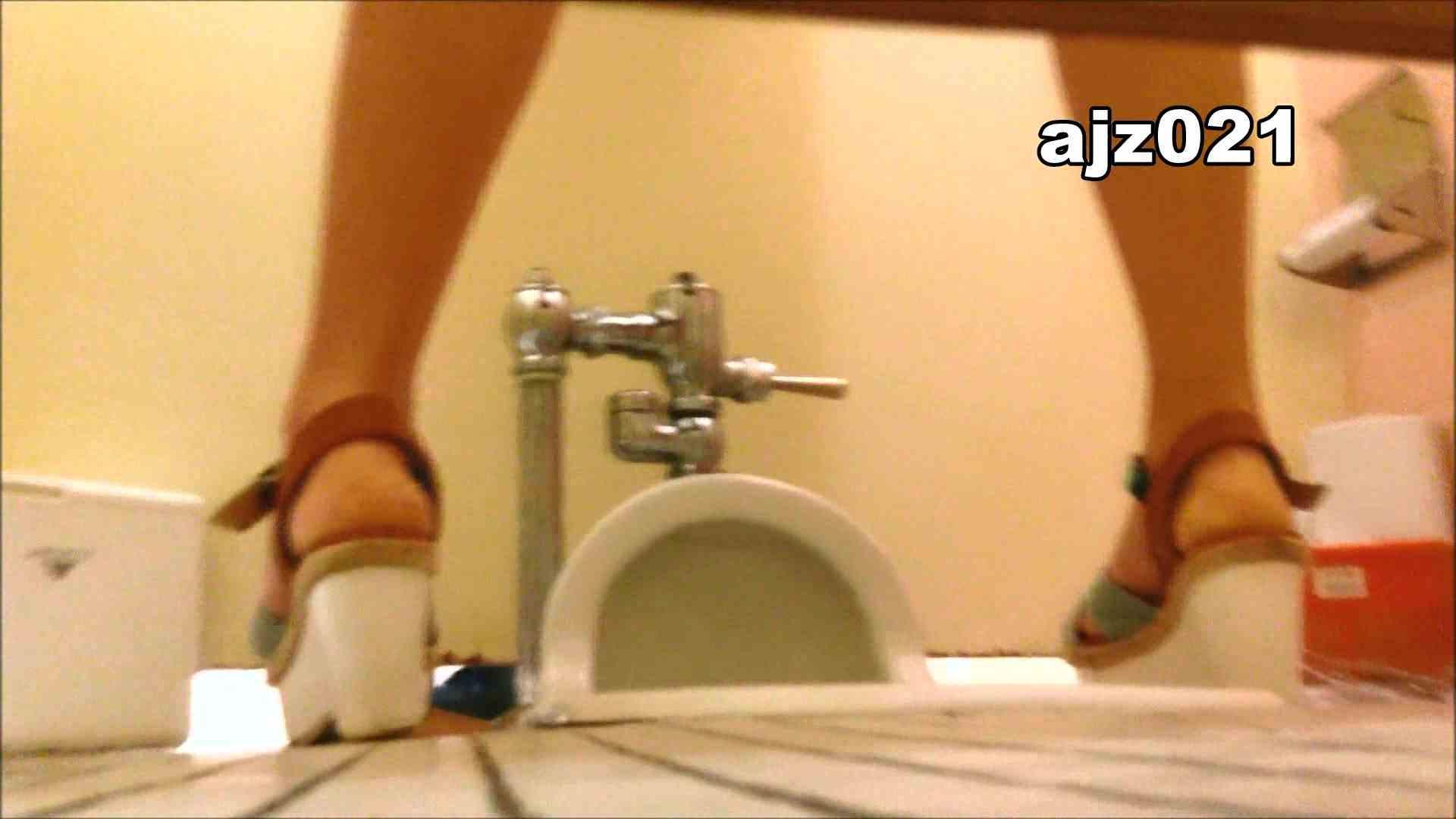 某有名大学女性洗面所 vol.21 潜入 隠し撮りオマンコ動画紹介 80PIX 21