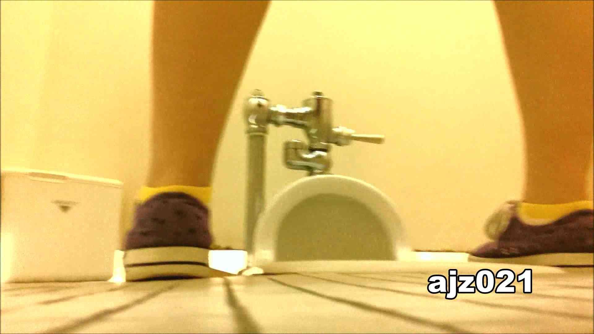 某有名大学女性洗面所 vol.21 潜入 隠し撮りオマンコ動画紹介 80PIX 45