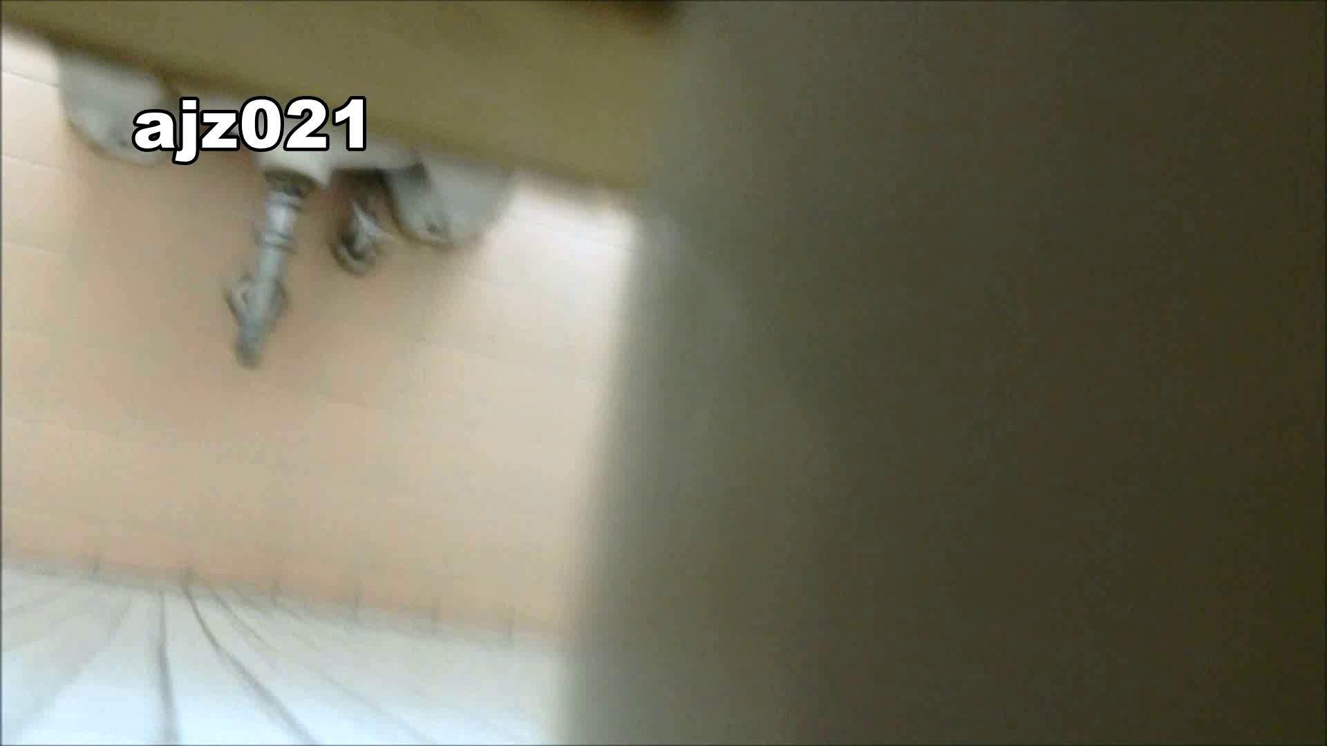 某有名大学女性洗面所 vol.21 和式 セックス画像 80PIX 76
