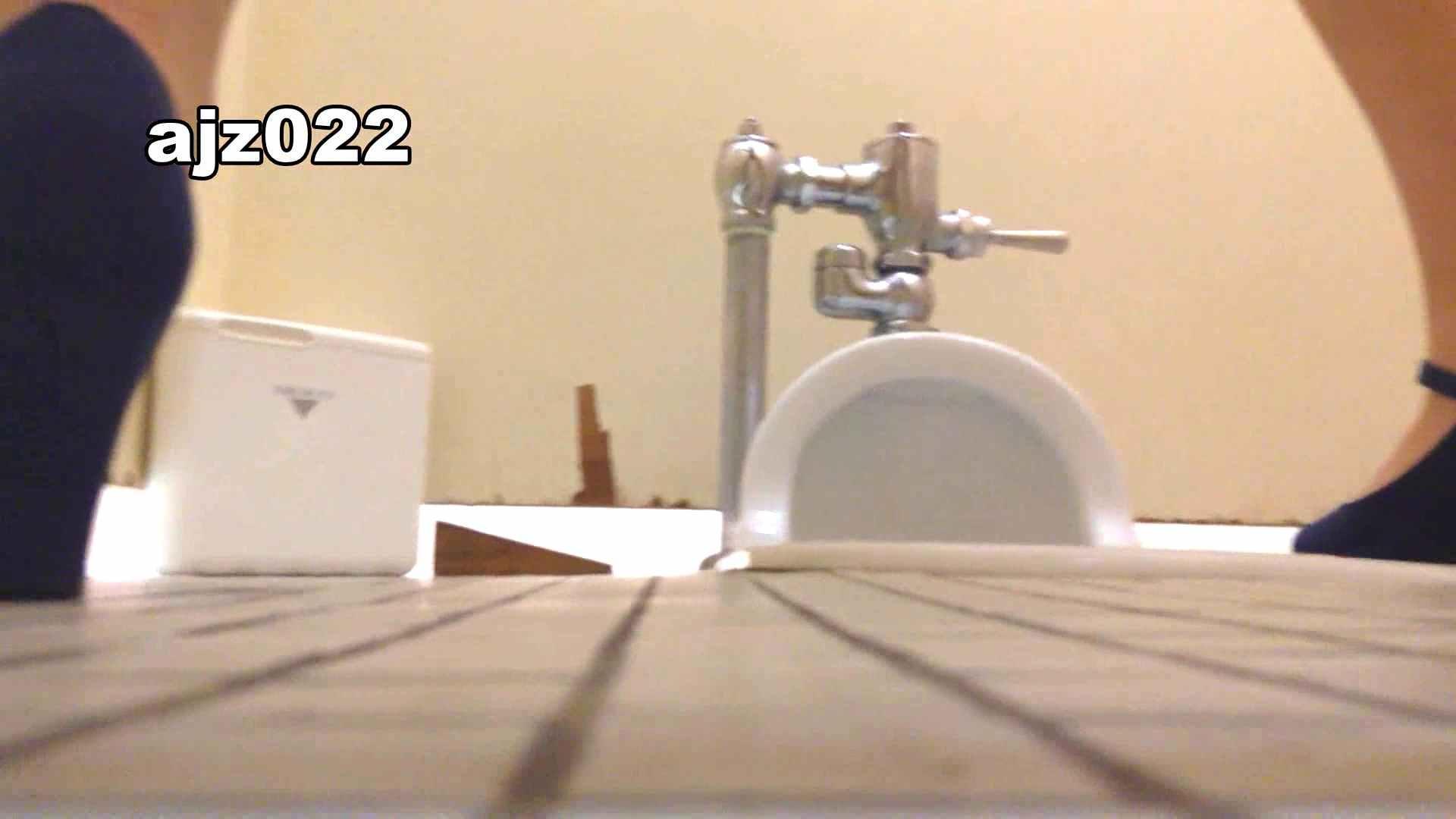 某有名大学女性洗面所 vol.22 洗面所 セックス画像 48PIX 32