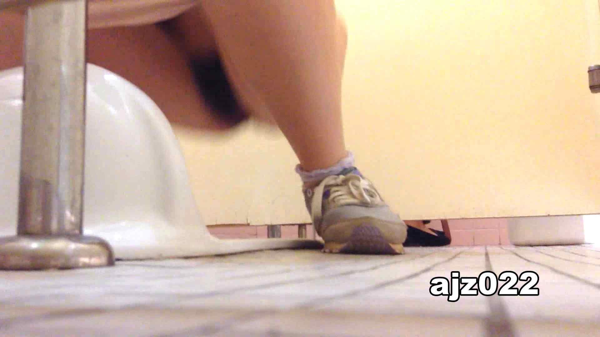某有名大学女性洗面所 vol.22 和式 オマンコ無修正動画無料 48PIX 40