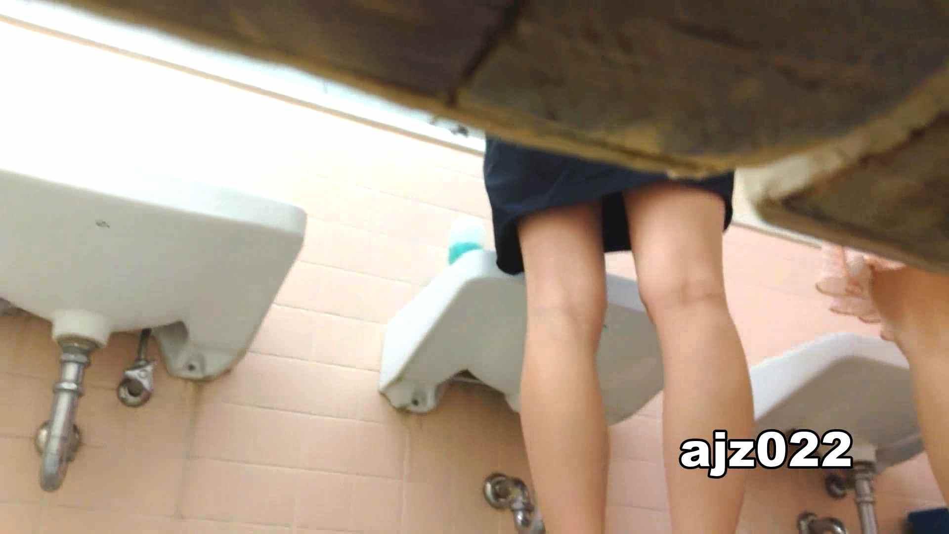 某有名大学女性洗面所 vol.22 和式 オマンコ無修正動画無料 48PIX 46
