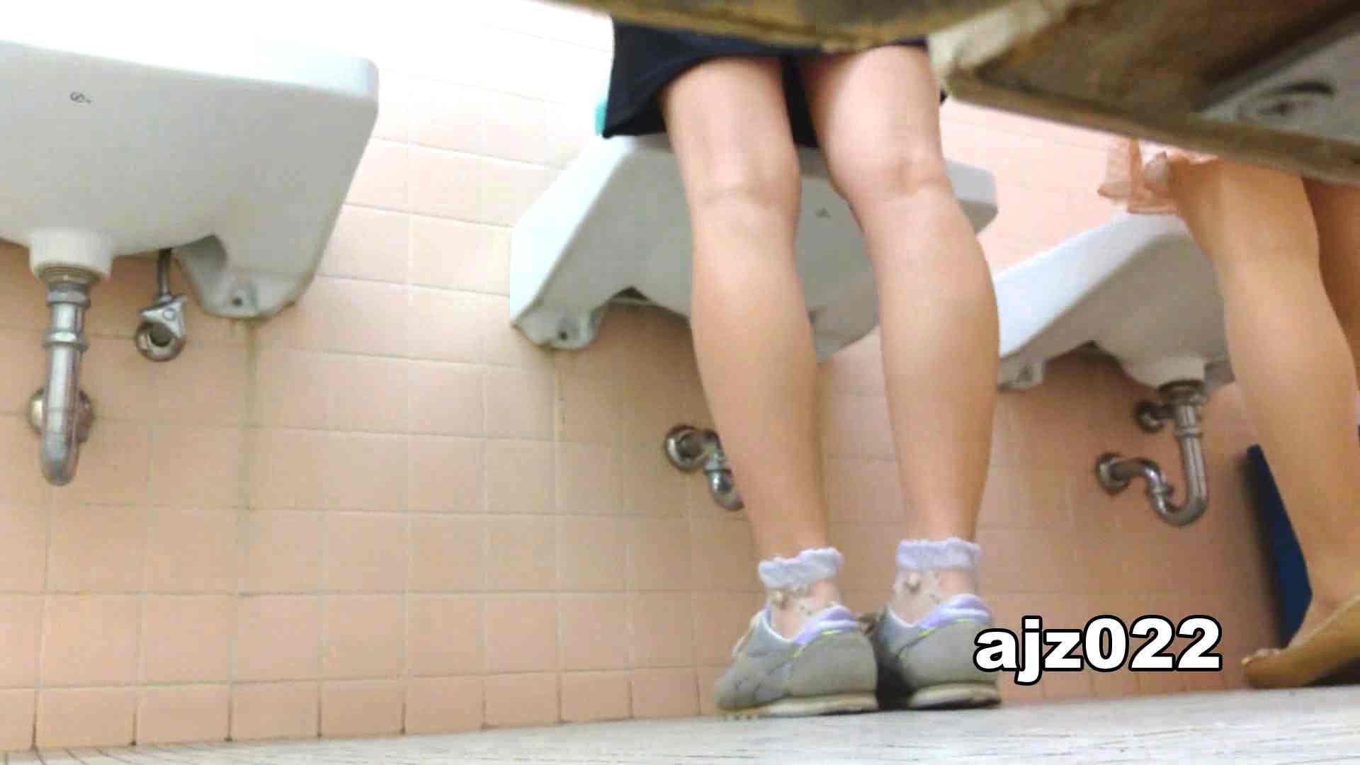 某有名大学女性洗面所 vol.22 排泄 セックス無修正動画無料 48PIX 47