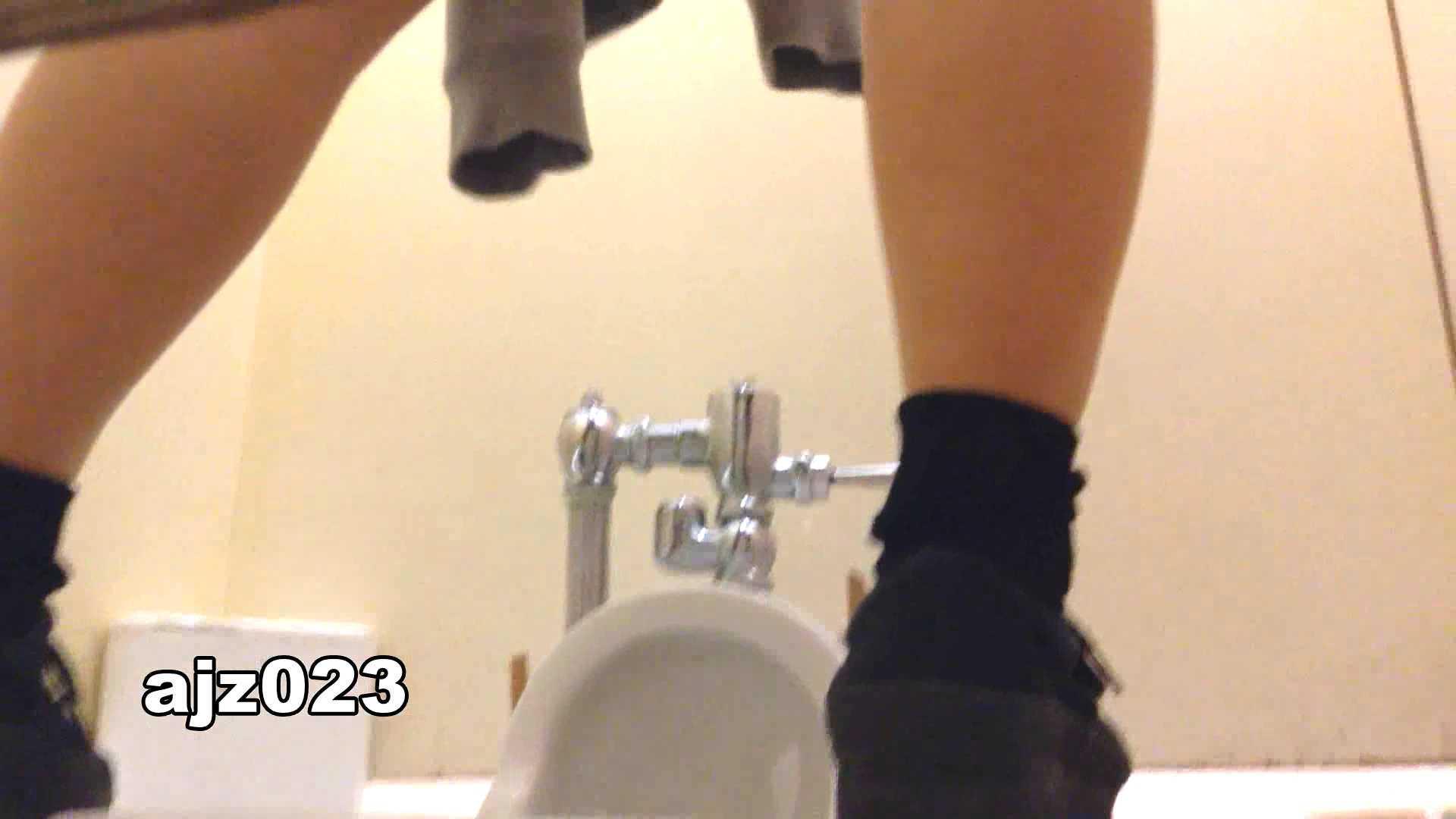 某有名大学女性洗面所 vol.23 OLのボディ 覗きおまんこ画像 64PIX 14