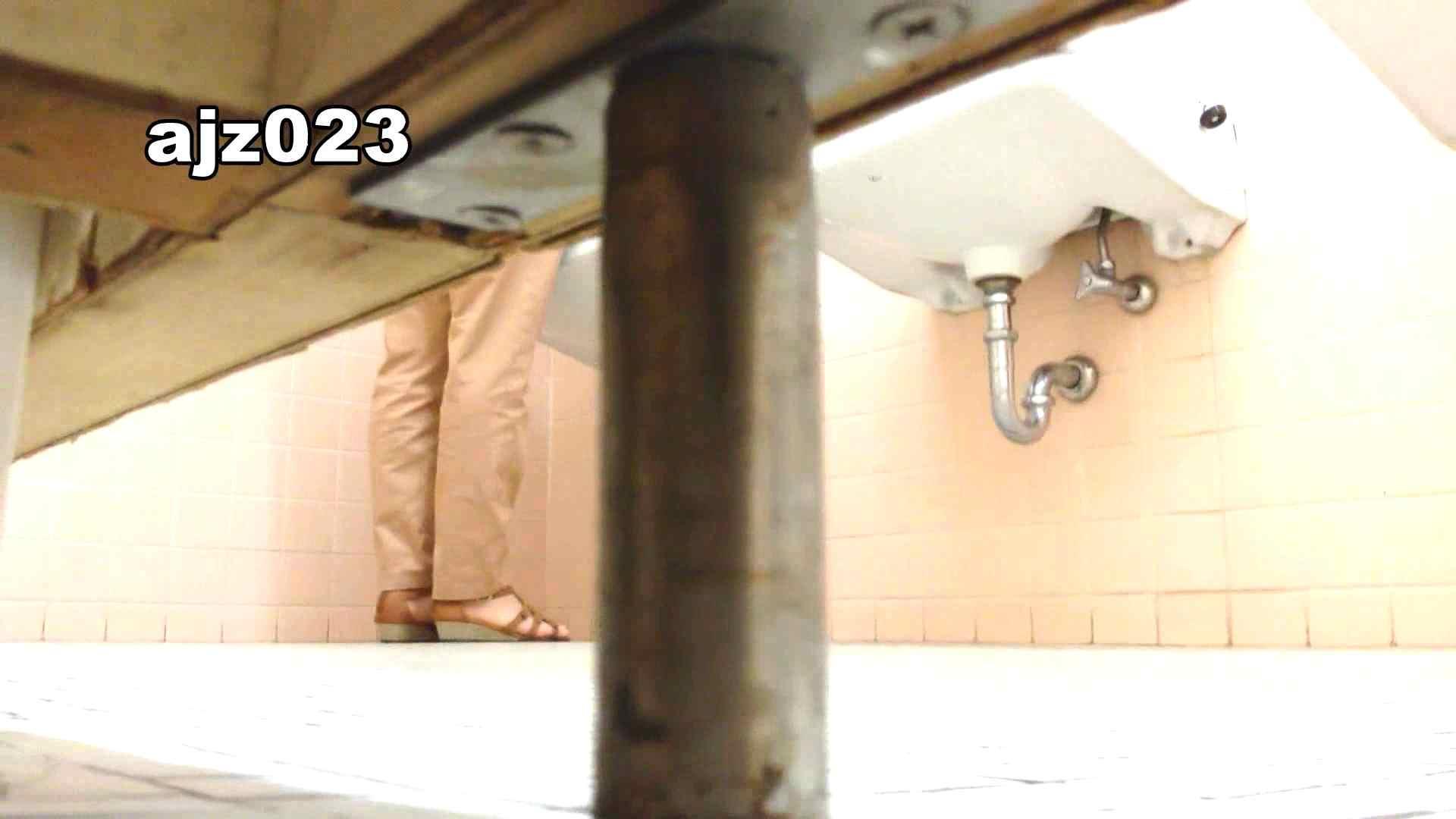 某有名大学女性洗面所 vol.23 和式 オメコ動画キャプチャ 64PIX 21