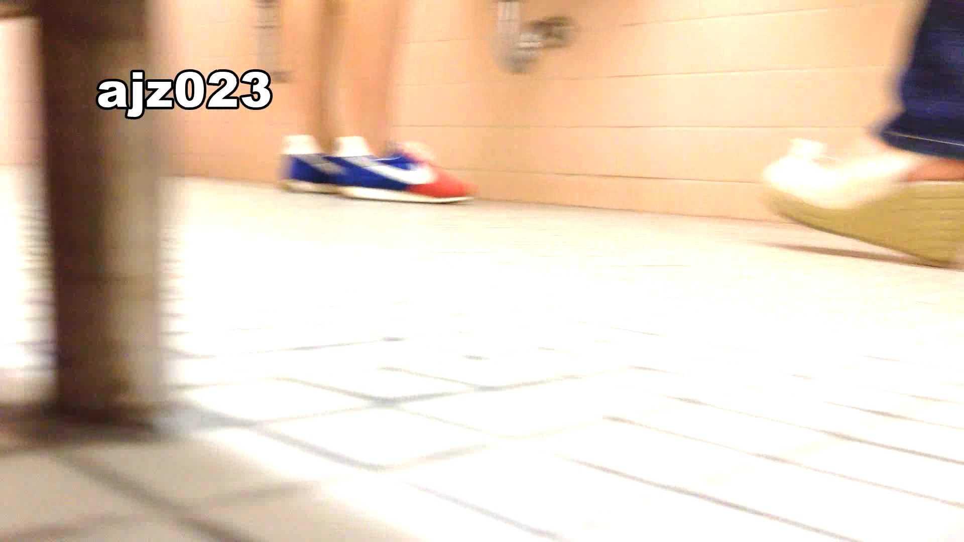 某有名大学女性洗面所 vol.23 OLのボディ 覗きおまんこ画像 64PIX 32