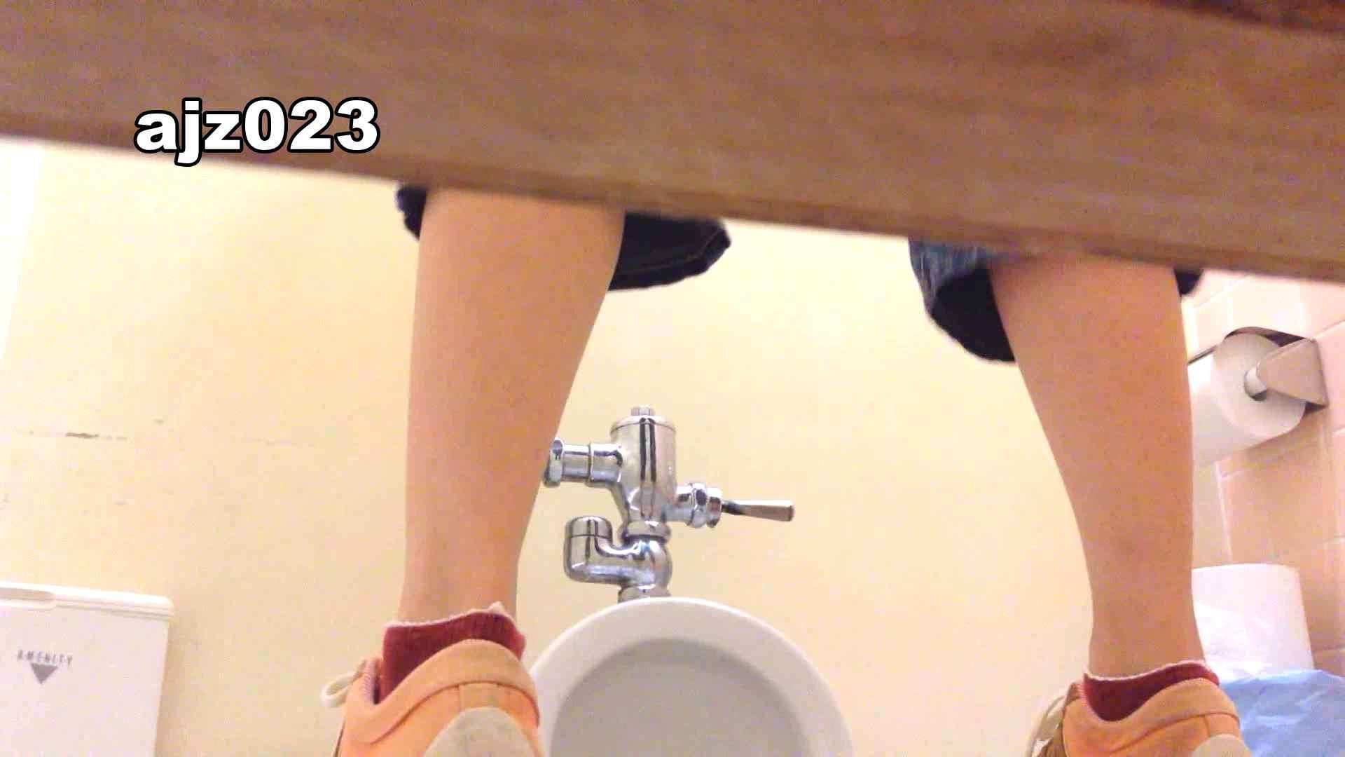 某有名大学女性洗面所 vol.23 排泄 スケベ動画紹介 64PIX 47