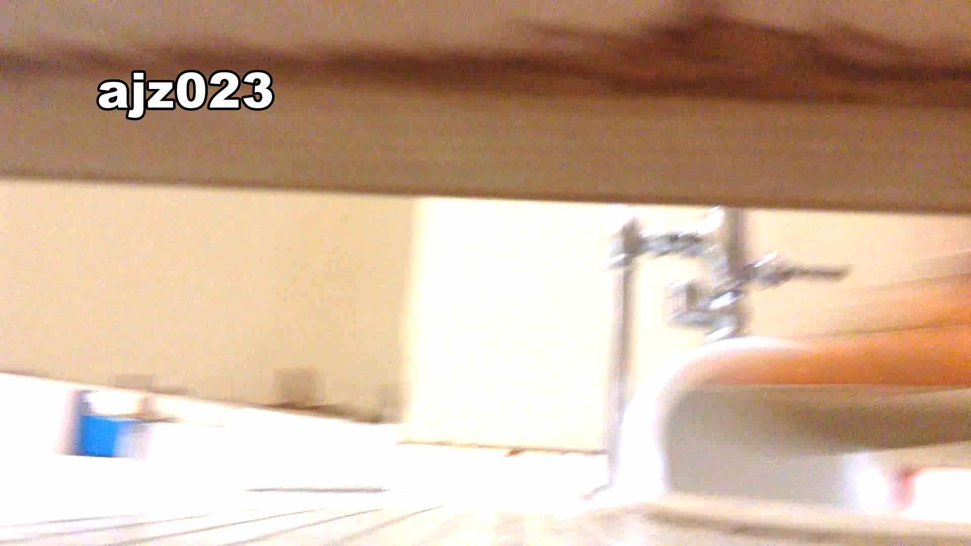 某有名大学女性洗面所 vol.23 和式 オメコ動画キャプチャ 64PIX 51