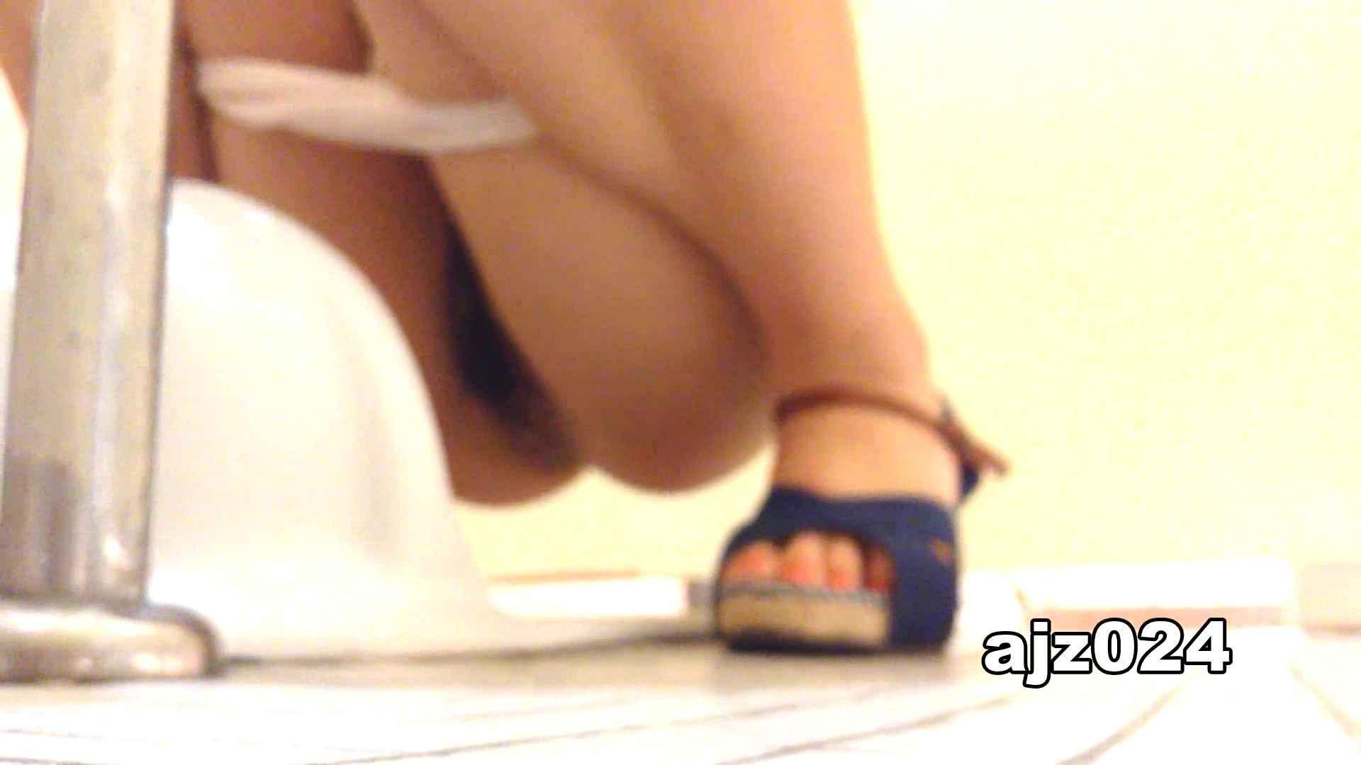 某有名大学女性洗面所 vol.24 排泄 スケベ動画紹介 56PIX 11