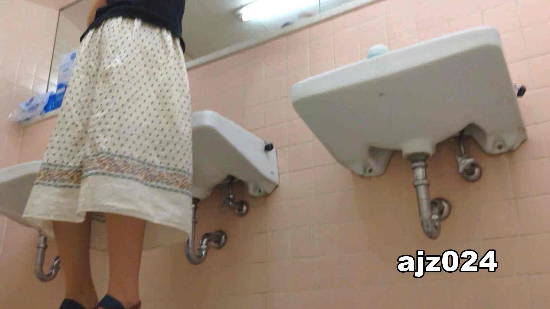 某有名大学女性洗面所 vol.24 潜入 | 和式  56PIX 13