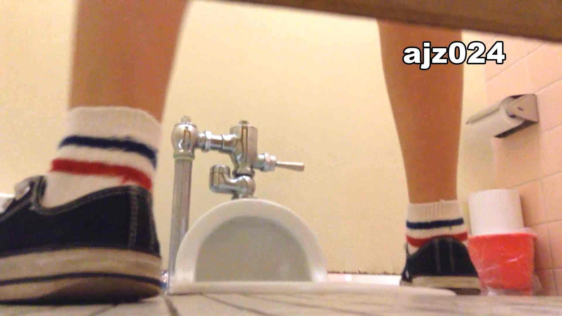 某有名大学女性洗面所 vol.24 OLのボディ AV無料動画キャプチャ 56PIX 15