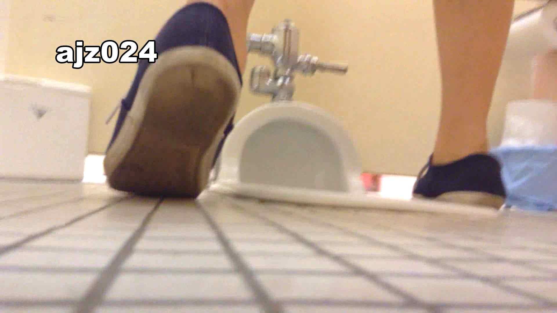 某有名大学女性洗面所 vol.24 OLのボディ AV無料動画キャプチャ 56PIX 27
