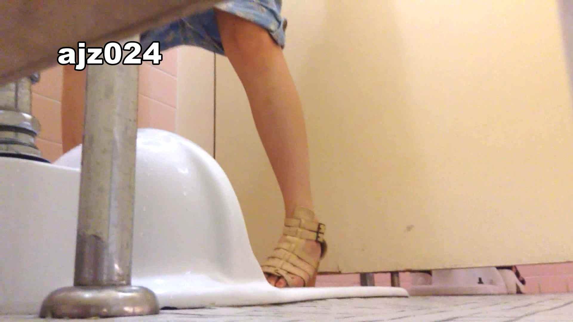 某有名大学女性洗面所 vol.24 排泄 スケベ動画紹介 56PIX 53