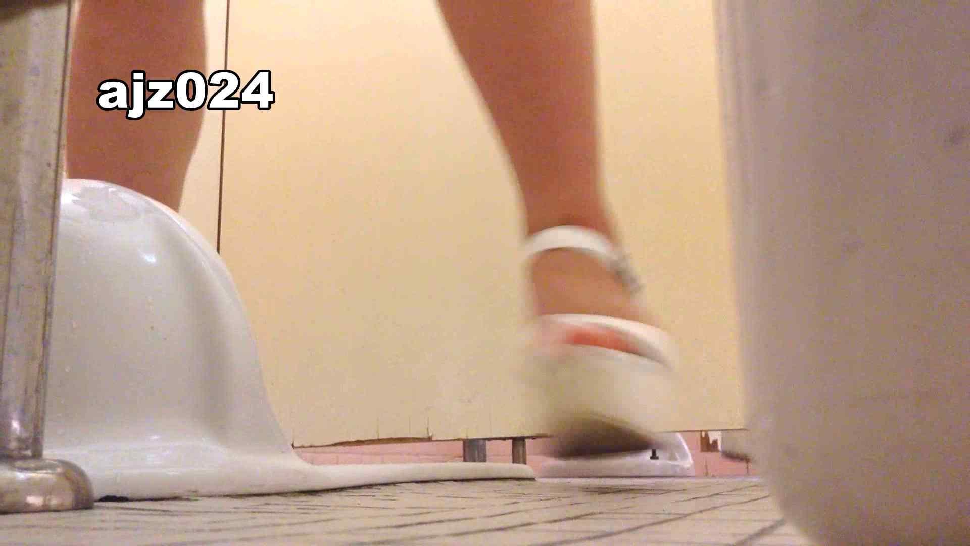 某有名大学女性洗面所 vol.24 潜入  56PIX 54