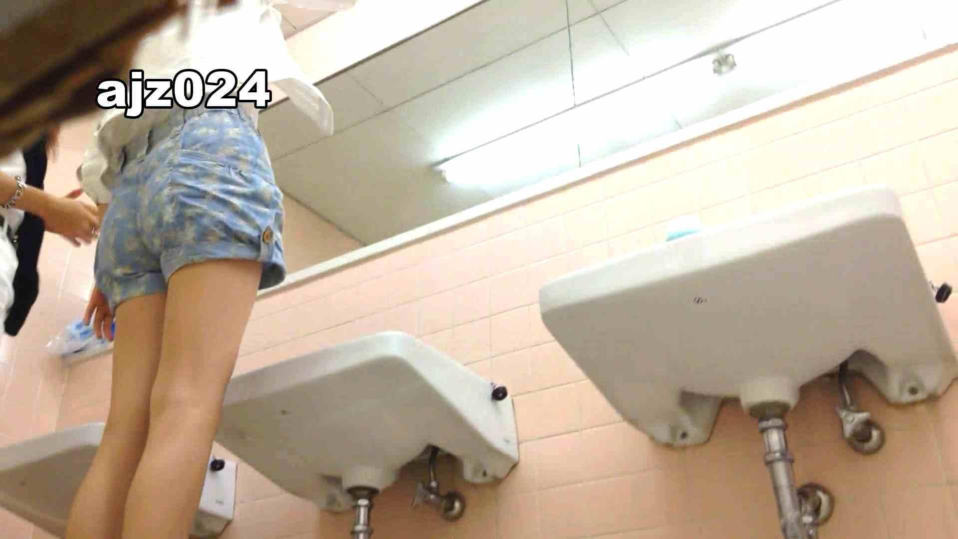 某有名大学女性洗面所 vol.24 洗面所 AV無料動画キャプチャ 56PIX 56