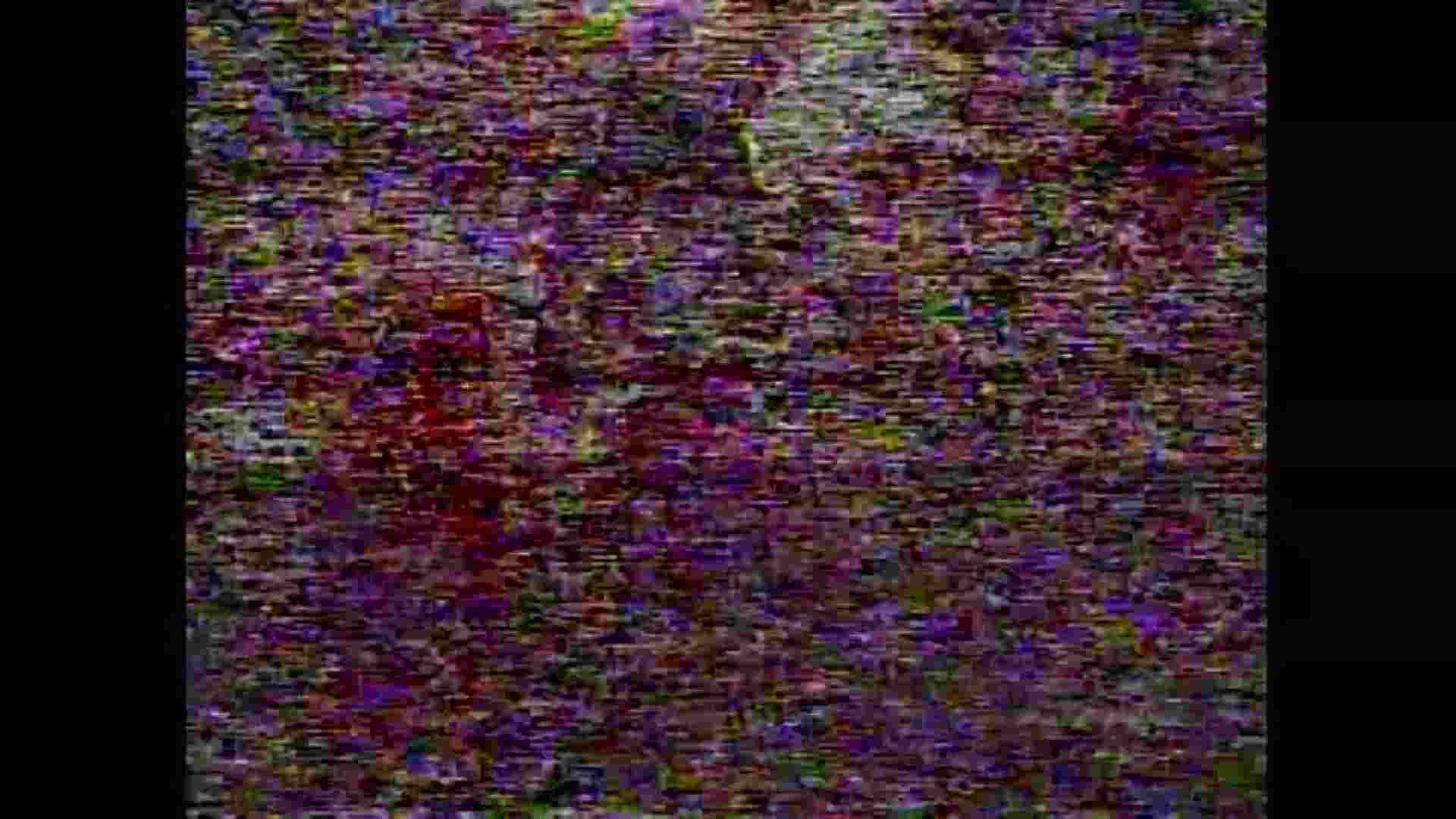 レース場での秘め事 Vol.11 OLのボディ 性交動画流出 75PIX 42