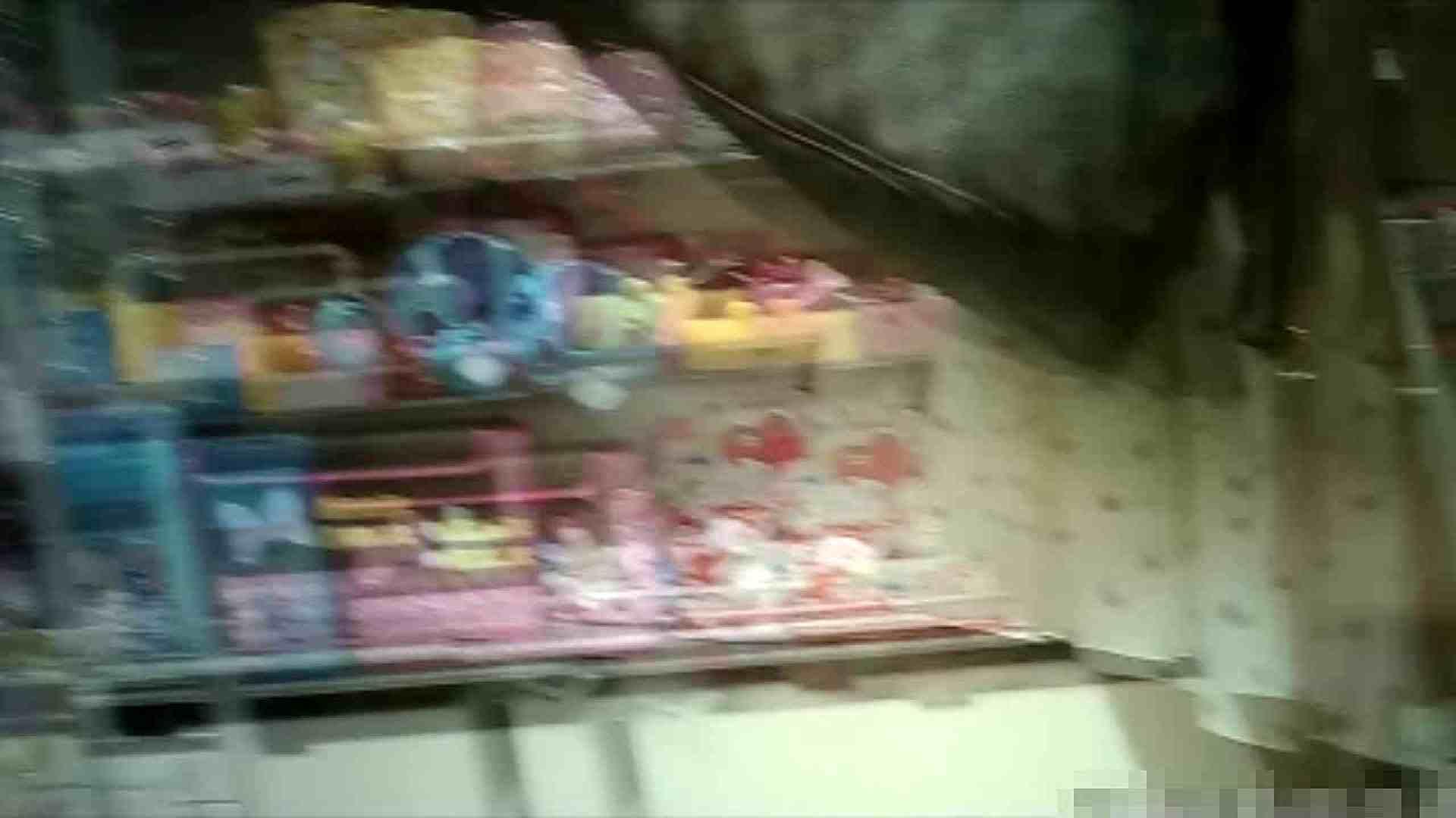 NO.5 意外に豊満な胸の雑貨屋で物色中のお女市さん 胸チラ  66PIX 14