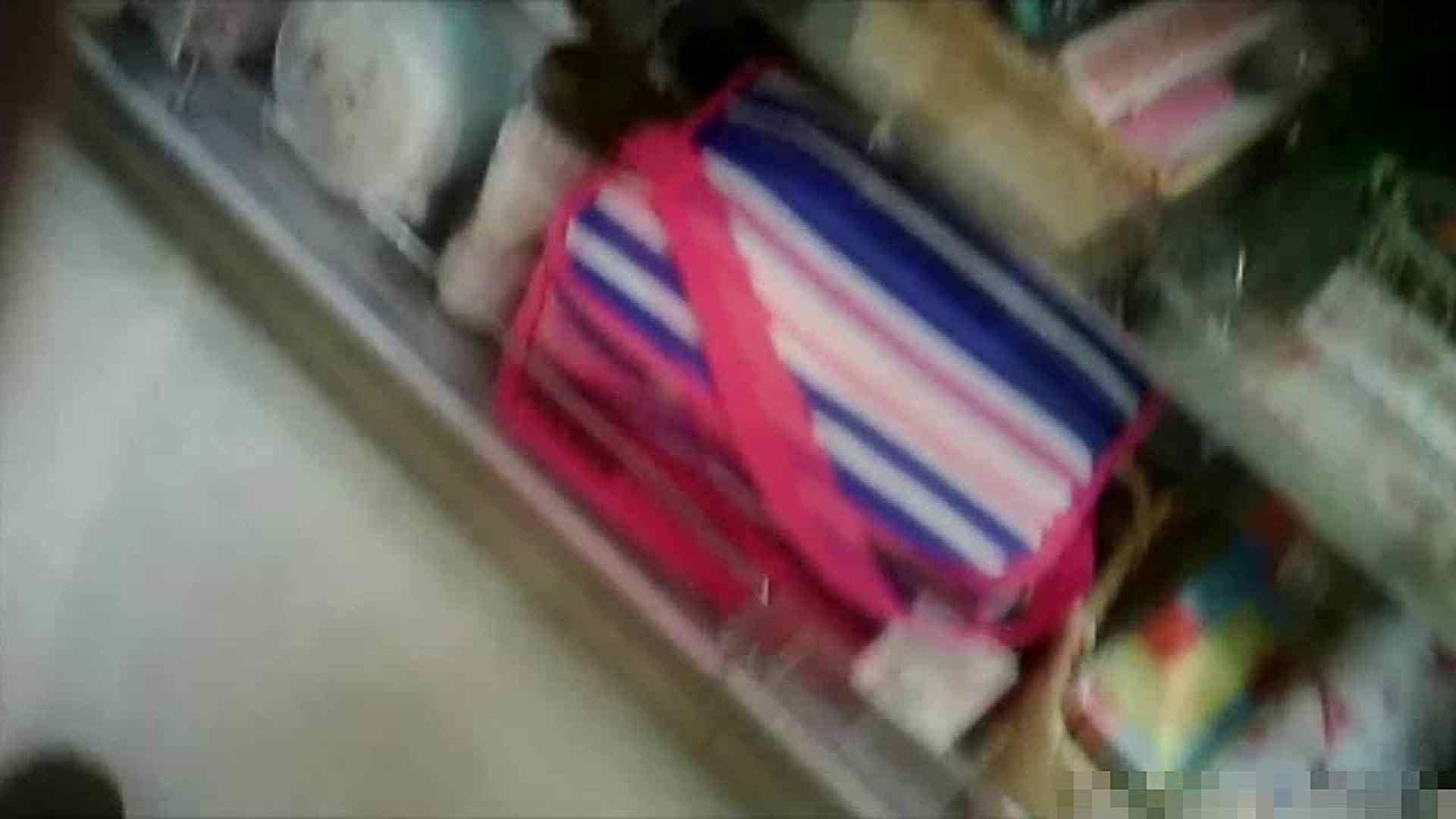 NO.5 意外に豊満な胸の雑貨屋で物色中のお女市さん 胸チラ  66PIX 46