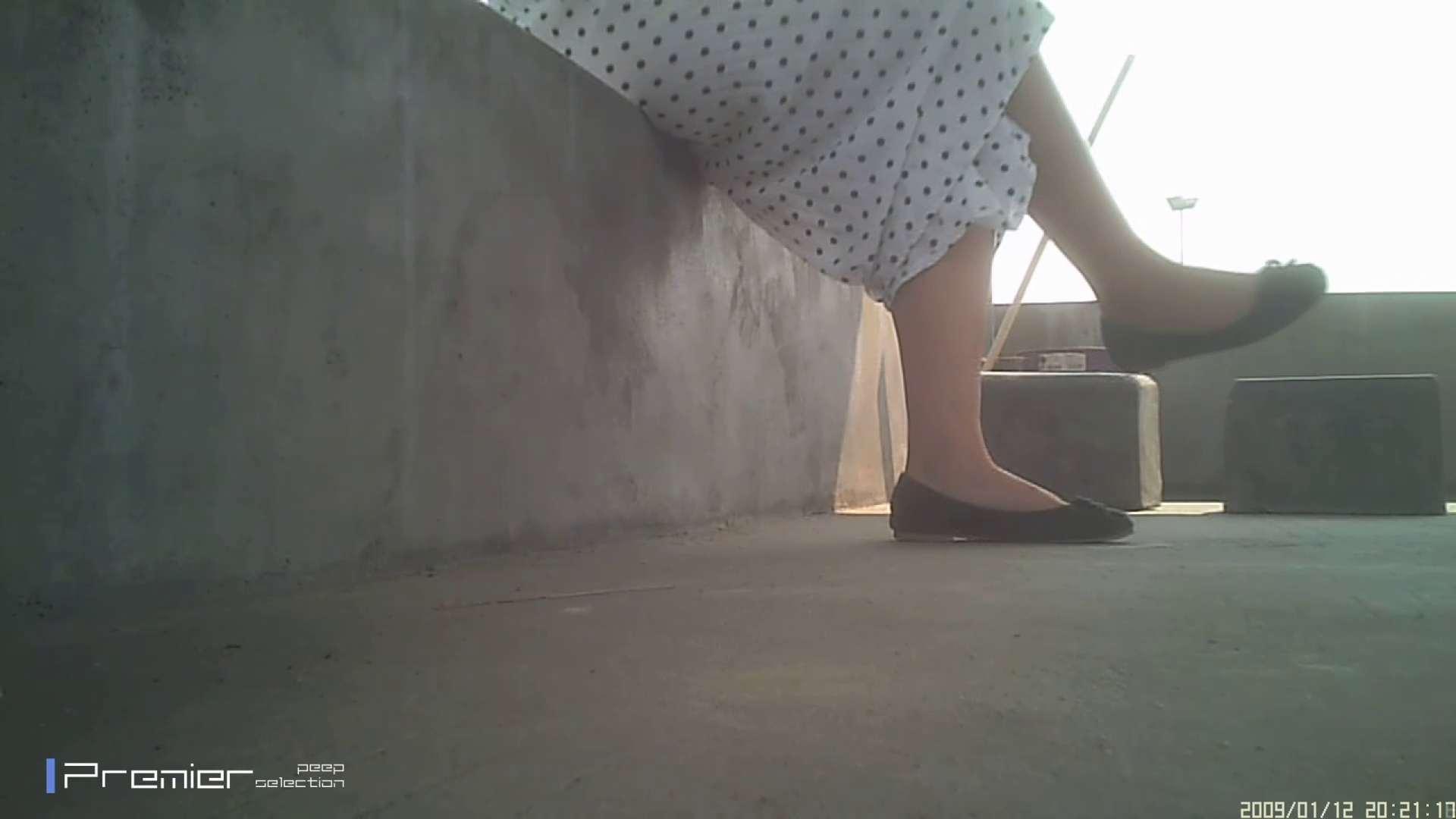美女のパンチラ&トイレシーンを密着盗撮!! 盗撮コレクションVol.04 パンチラ ワレメ無修正動画無料 79PIX 5