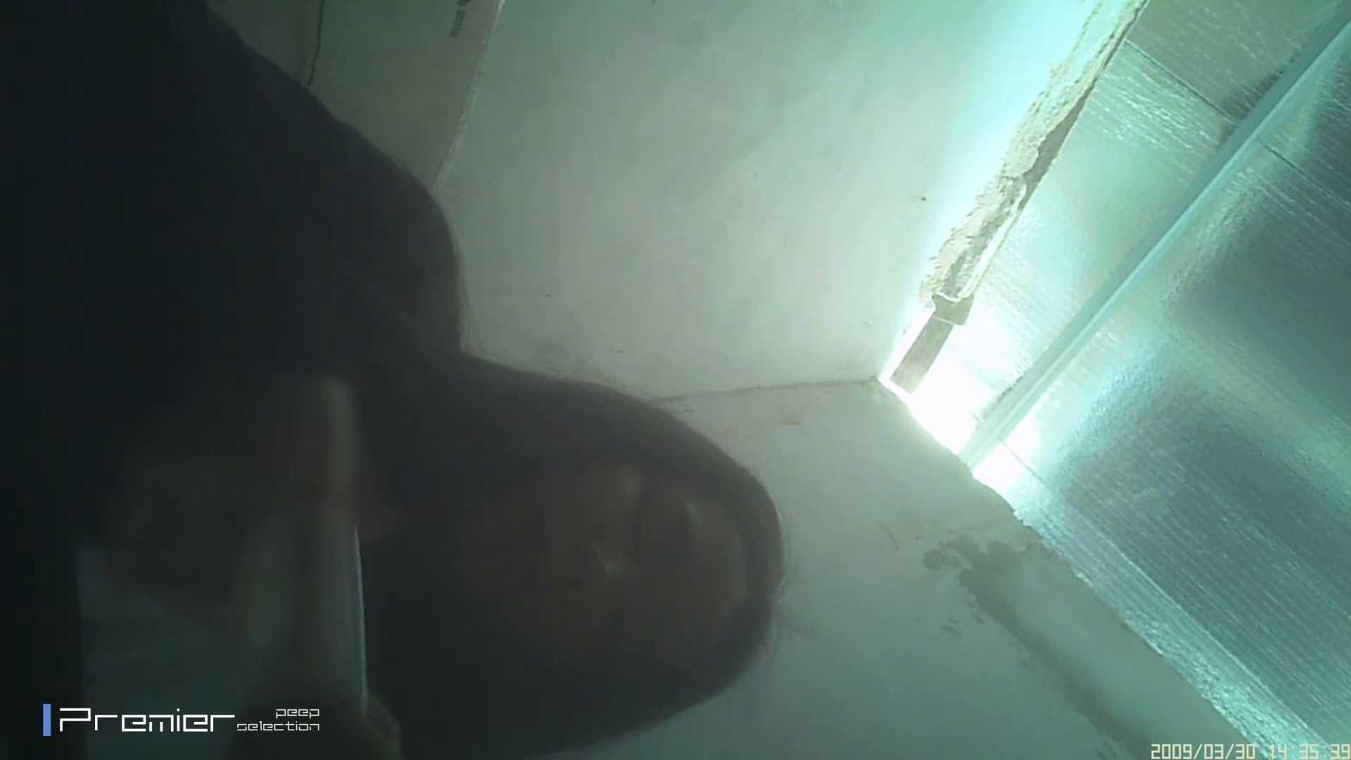 美女のパンチラ&トイレシーンを密着盗撮!! 盗撮コレクションVol.04 トイレの実態 ヌード画像 79PIX 54