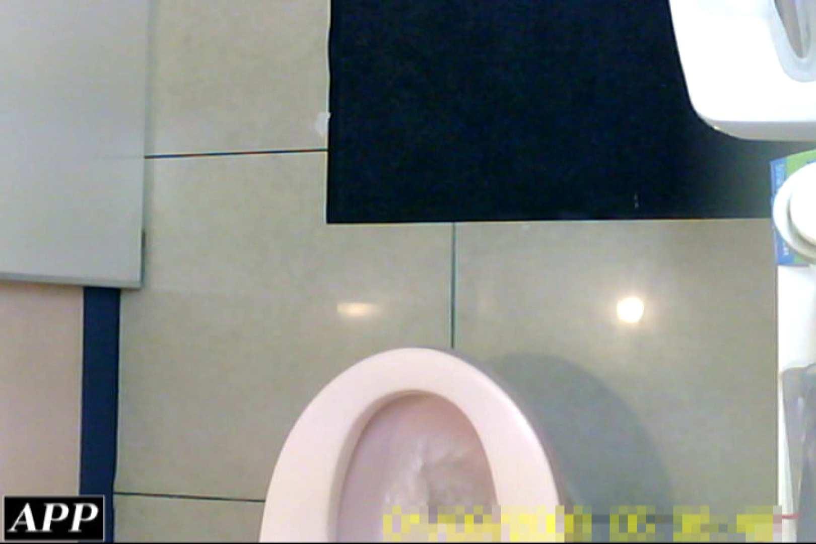 3視点洗面所 vol.88 OLのボディ 性交動画流出 60PIX 38