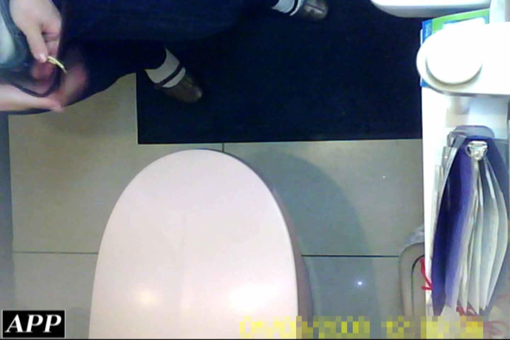 3視点洗面所 vol.103 オマンコ AV動画キャプチャ 59PIX 16