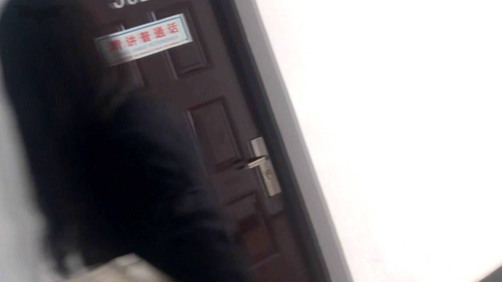 JD盗撮 美女の洗面所の秘密 Vol.09 トイレの実態 われめAV動画紹介 67PIX 14