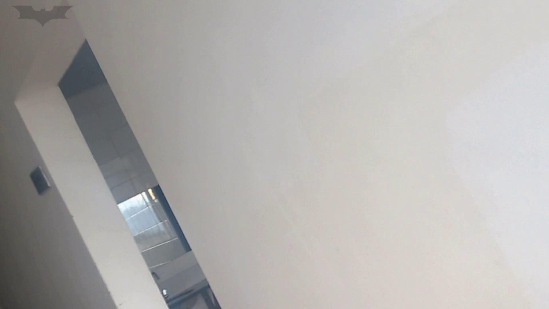 JD盗撮 美女の洗面所の秘密 Vol.10 洗面所 アダルト動画キャプチャ 48PIX 42