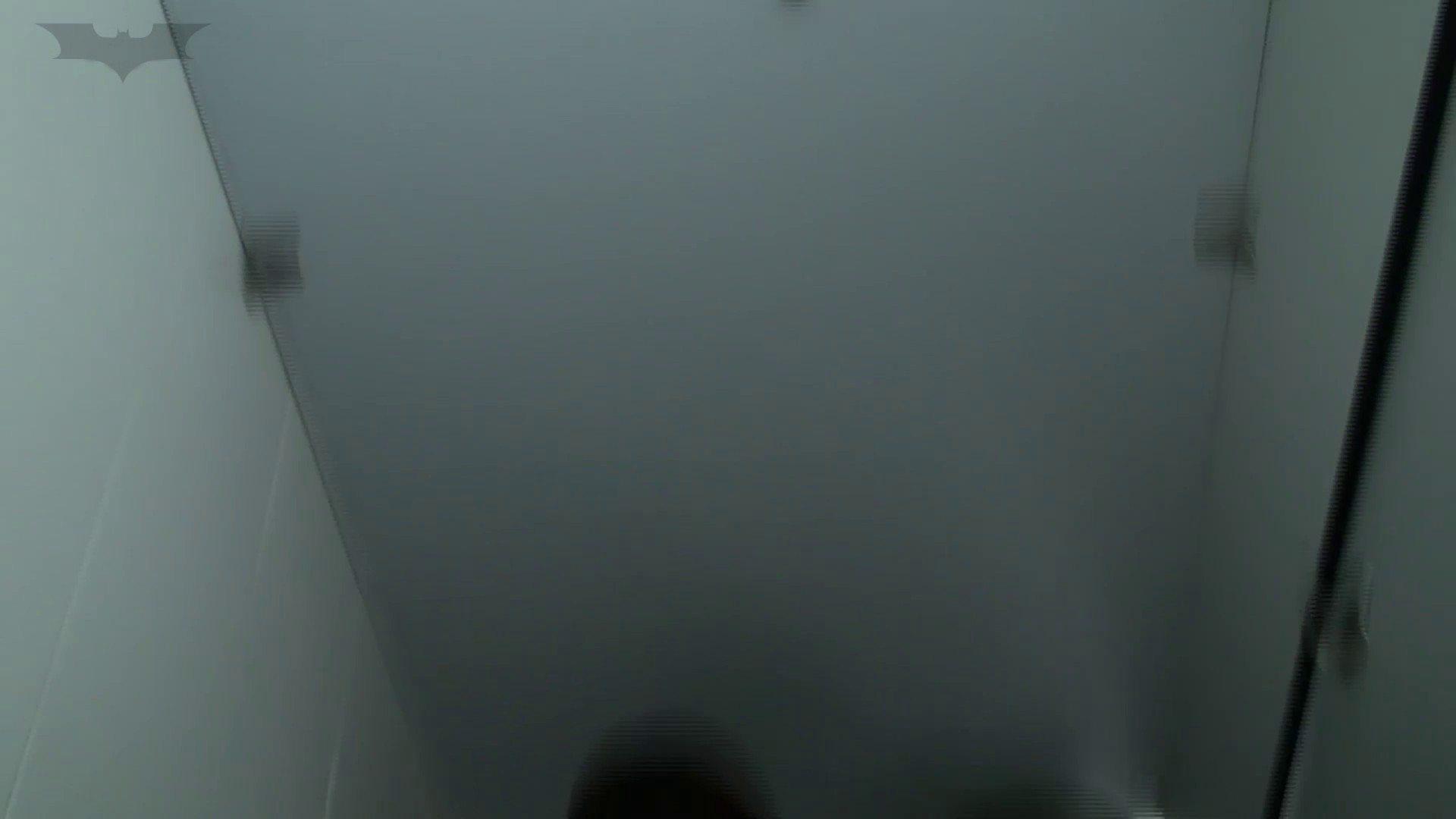 JD盗撮 美女の洗面所の秘密 Vol.26 美女のボディ オメコ無修正動画無料 73PIX 14