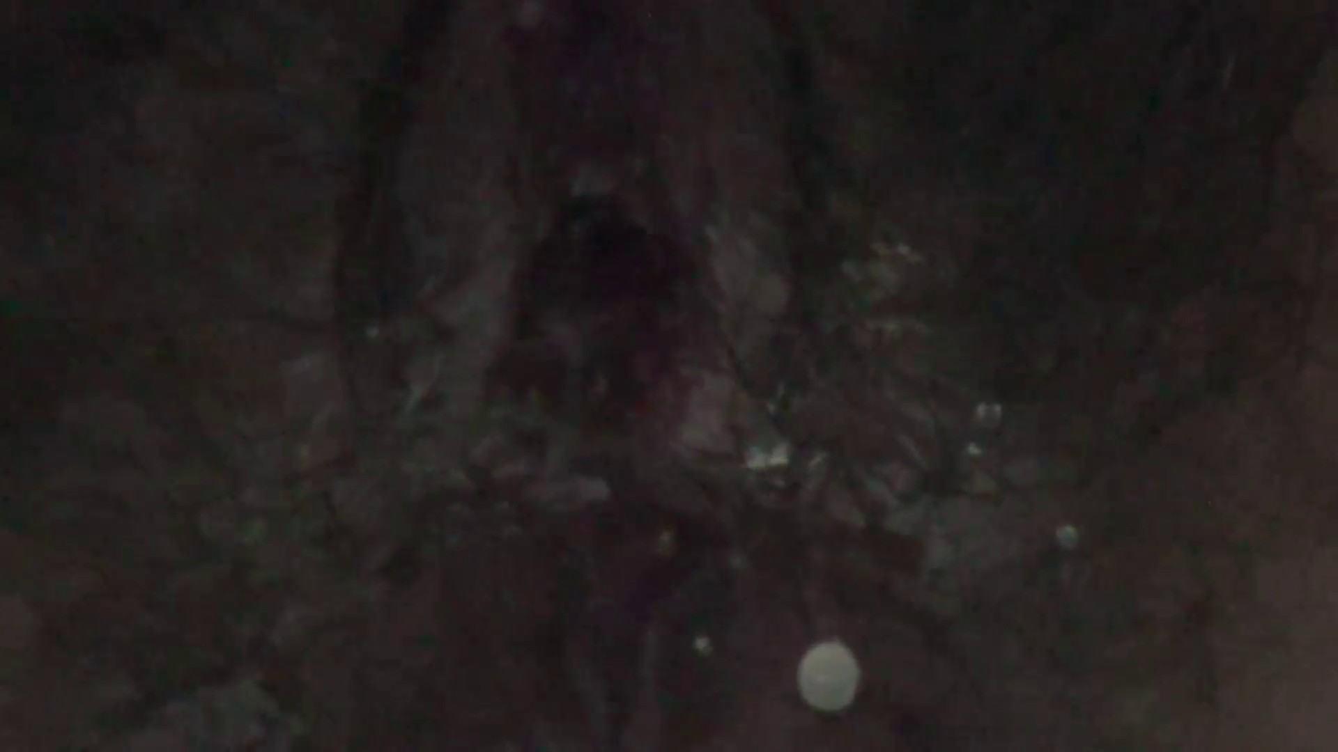 JD盗撮 美女の洗面所の秘密 Vol.28 OLのボディ  55PIX 55