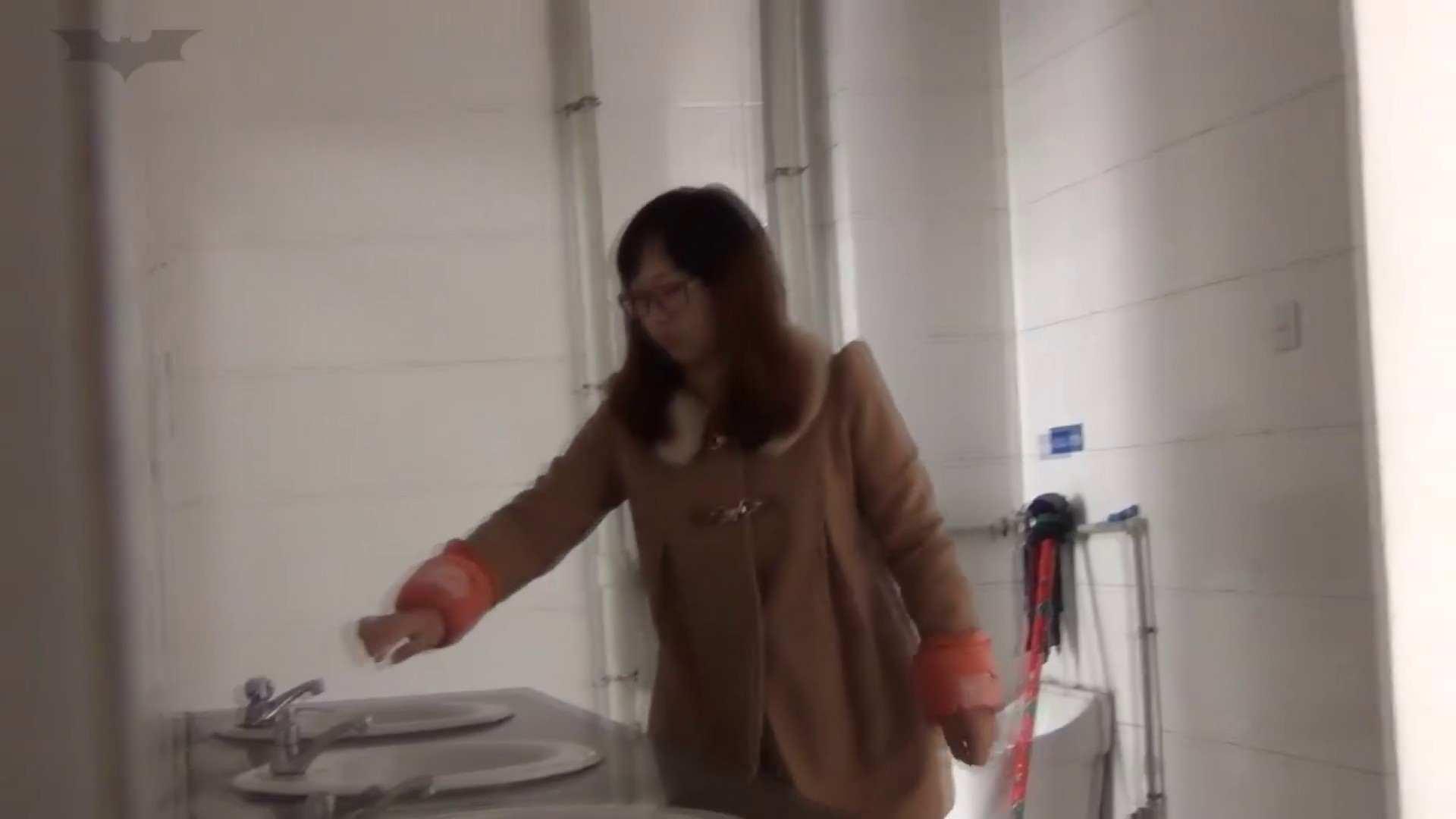 JD盗撮 美女の洗面所の秘密 Vol.34 美女のボディ ぱこり動画紹介 73PIX 24