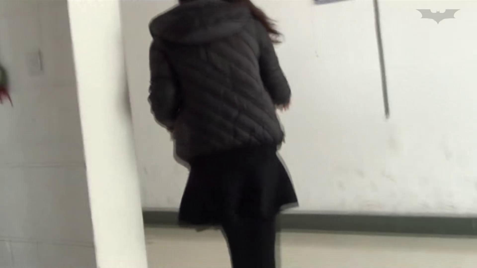 JD盗撮 美女の洗面所の秘密 Vol.46 洗面所 性交動画流出 68PIX 22