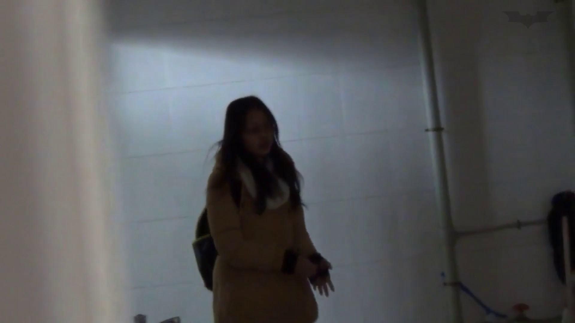 JD盗撮 美女の洗面所の秘密 Vol.55 美女のボディ スケベ動画紹介 82PIX 48