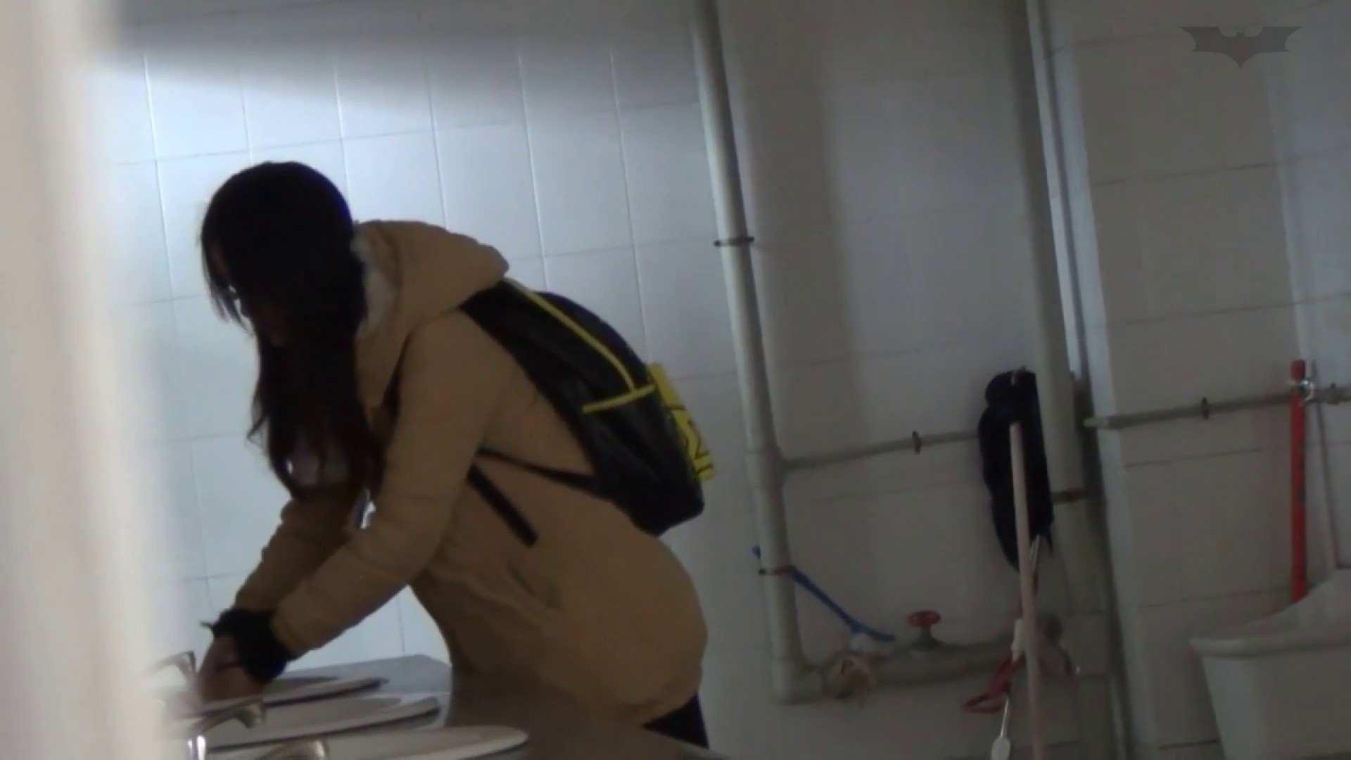 JD盗撮 美女の洗面所の秘密 Vol.55 OLのボディ 性交動画流出 82PIX 52