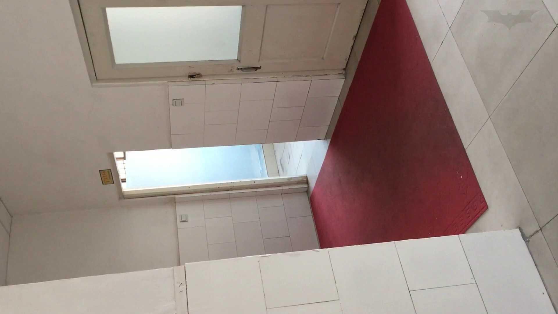 芸術大学ガチ潜入盗撮 JD盗撮 美女の洗面所の秘密 Vol.84 美女のボディ | OLのボディ  54PIX 31