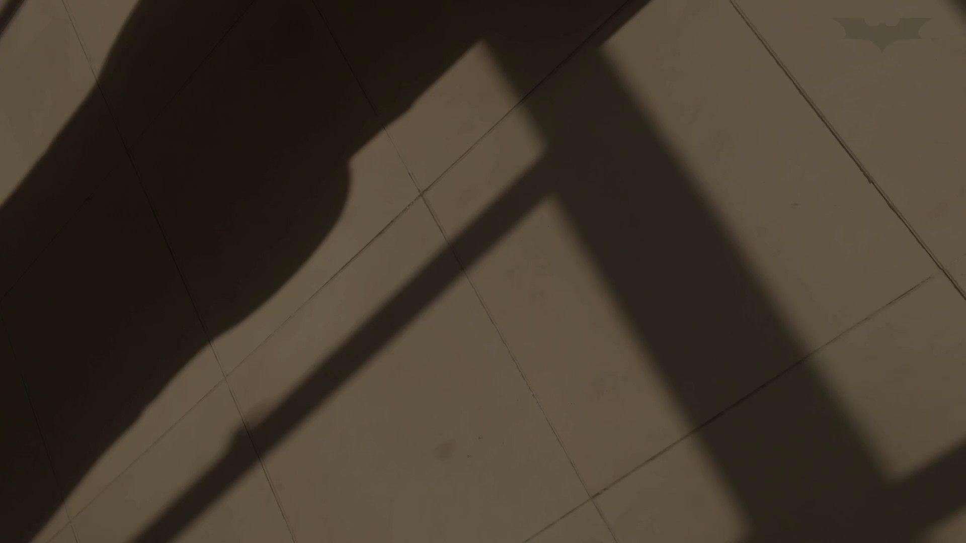 芸術大学ガチ潜入盗撮 JD盗撮 美女の洗面所の秘密 Vol.91 洗面所  58PIX 12