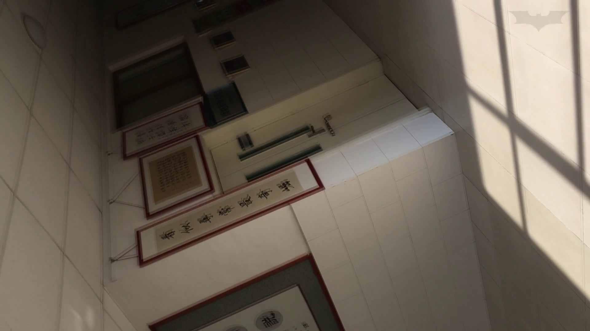 芸術大学ガチ潜入盗撮 JD盗撮 美女の洗面所の秘密 Vol.91 洗面所 | 美女のボディ  58PIX 13