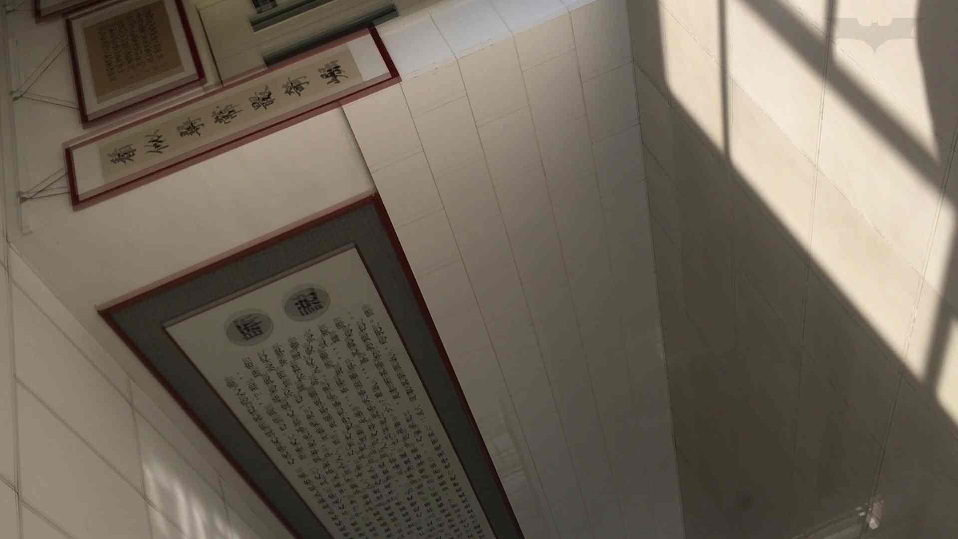 芸術大学ガチ潜入盗撮 JD盗撮 美女の洗面所の秘密 Vol.91 OLのボディ 盗み撮り動画キャプチャ 58PIX 14
