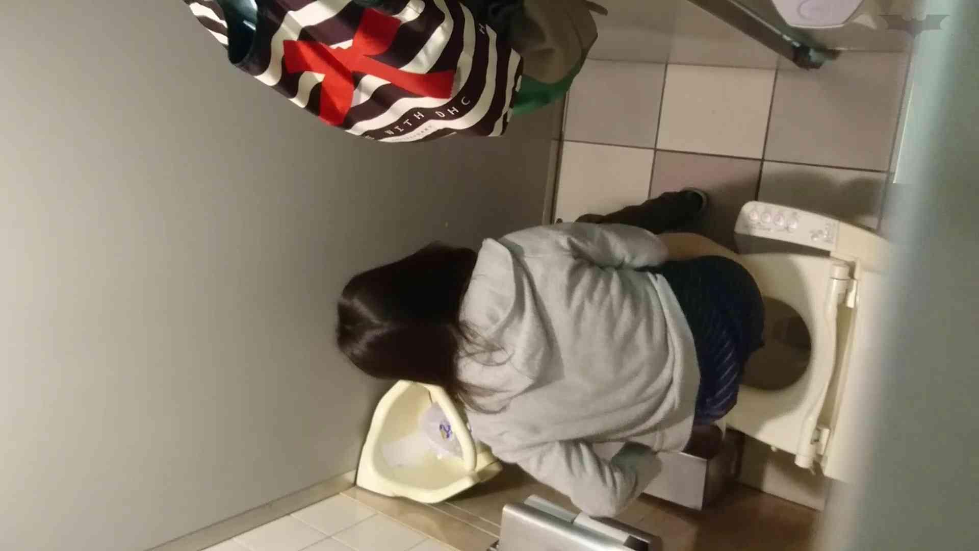 化粧室絵巻 ショッピングモール編 VOL.23 若いギャルが登場! ギャル盗撮映像  101PIX 60