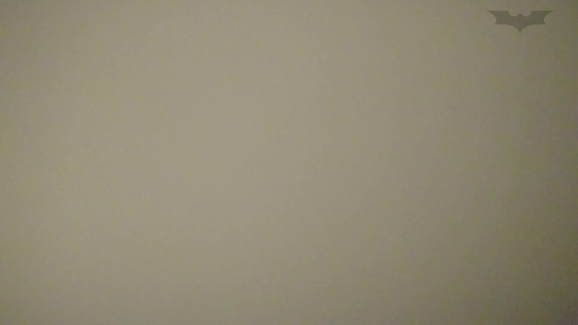 化粧室絵巻 ショッピングモール編 VOL.15 OLのボディ   0  67PIX 7